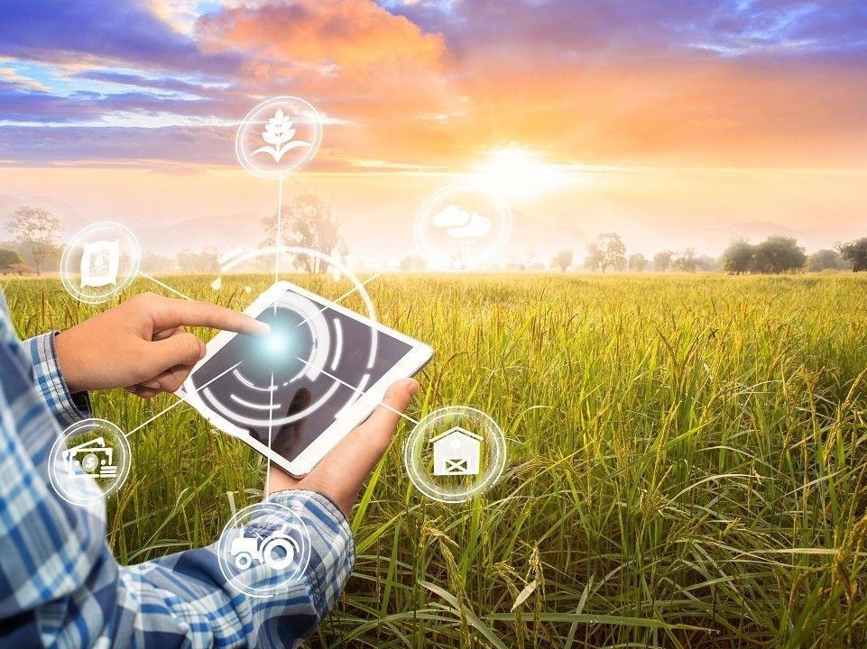 Potenziamento delle dotazioni tecnologiche innovative e delle attrezzature tecnico scientifiche per gli istituti tecnici agrari statali