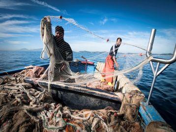 (FEAMP): bando 2021 Misura 2.48 - Investimenti produttivi destinati all'acquacoltura